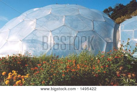 Biomes At The Eden Project