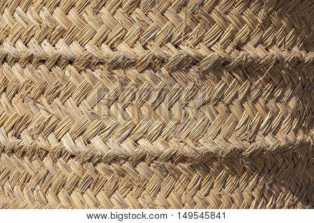 Detailed esparto fibers background. Closeup under sun