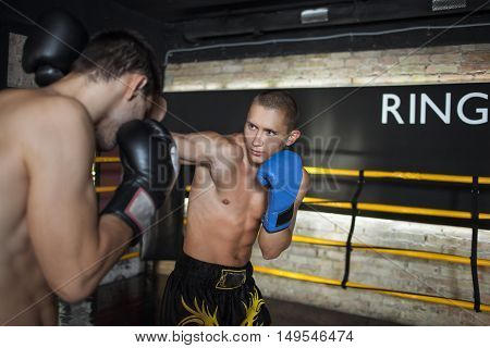 Boxers doing some sparring in the ring