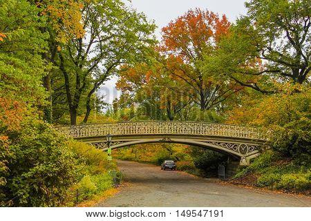 Bridge in Central Park New York, USA