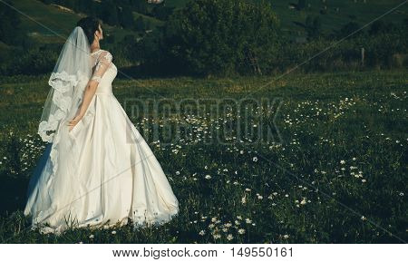Beautiful young bride outdoors in a forest.