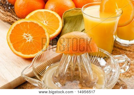 Fresh Squeezed Orange Juice
