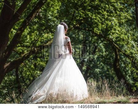 Beautiful Bride In Long Dress