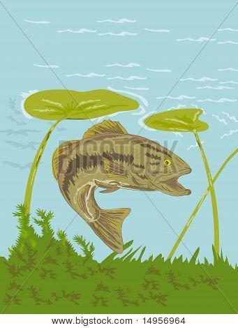 largemouth bass fish swimming