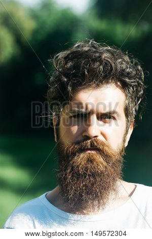 young sexy bearded handsome man with long beard on serious face and stylish hairstyle sunny summer outdoor portrait on green natural background