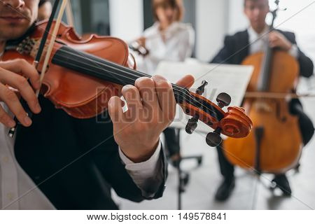 Violinist Performing On Stage With Orchestra