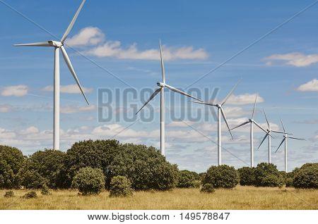Wind turbines in the countryside. Clean alternative renewable energy. Horizontal