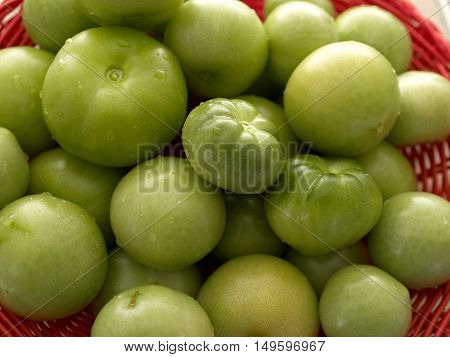 Freshly picked green organic coctail tomatoes in a red basket