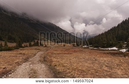 Trail in the valley in the Western Tatras
