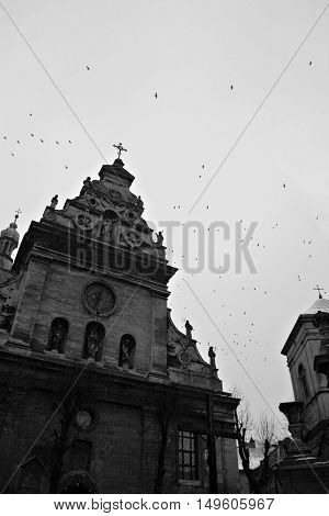 An Old Church And A Flock Of Crows On The Background Of The Sky In Black And White Lviv