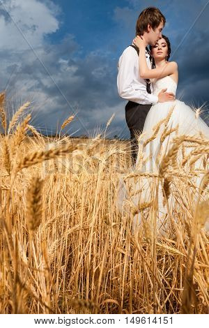 Bride And Groom In Tender Hugs In Wheat Field With Dramatic Sky In The Back