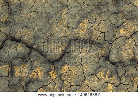 Dry soil texture on the ground. Selective focus.