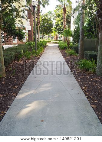 long concrete sidewalk that is partially shaded. The sidewalk is lined with trees and is between two buildings.