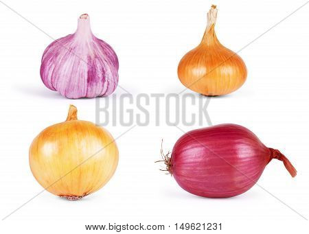 Garlic and onion isolated on white background set