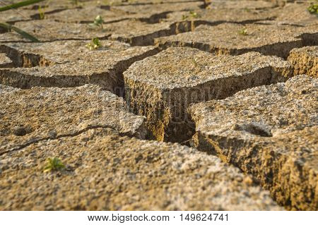Dry land texture. Cracked dry clay soil as background. Selective focus.