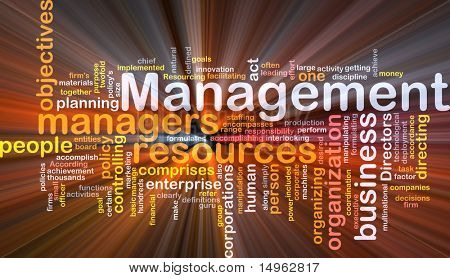Word cloud concept illustration of business management glowing light effect