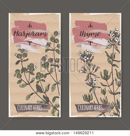 Two color labels with thyme and marjoram sketch. Culinary herbs collection. Great for cooking, medical, gardening design.