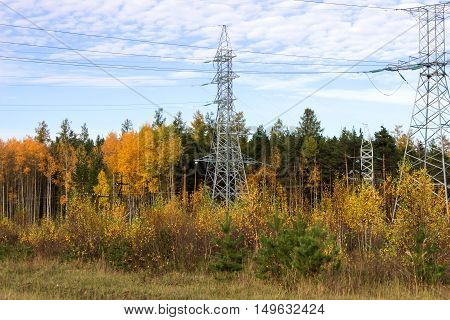 High-voltage electric lines and electric poles in a forest autumn