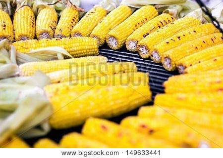 Closeup delicious BBQ grilled Mexican corn on the cob, vegetable food background. Barbecued roasted on the hot stove fresh tasty sweet corn. Ready to Eat.