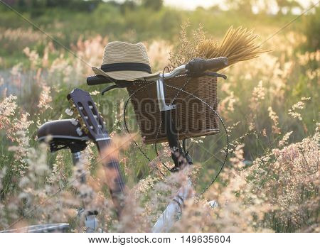 Bicycle with basket and guita of flowers in meadow select and soft focus