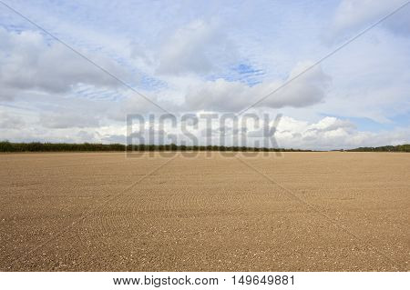 Cultivated Chalky Soil In Autumn