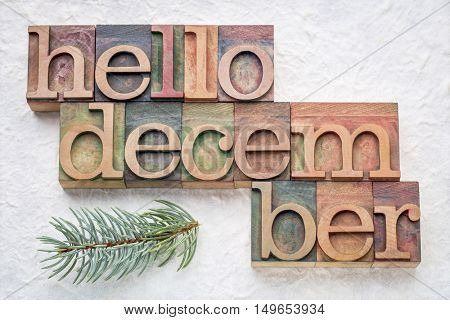 Hello December greeting card - letterpress wood type blocks against white lokta paper with a branch of Colorado spruce
