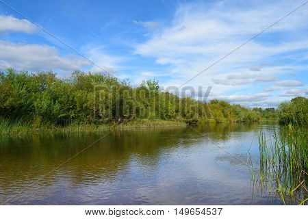 riverbank overgrown with bushes sky with clouds and reflection in water