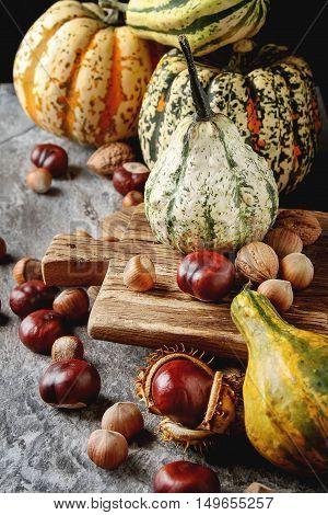 Decorating For Halloween. Small Most Pumpkin With Chestnuts And