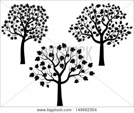 Black tree silhouettes vector set in flat style