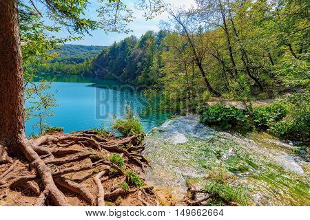 Scenic view of Plitvice lakes and forest