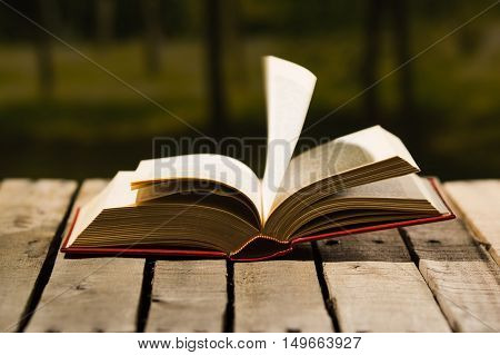Thick book lying open on wooden surface, pages blowing in wind, beautiful night light setting, magic concept shoot.