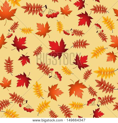 Vector seamless pattern with red and yellow autumn leaves,