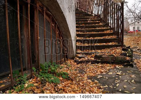 Autumn etude with a ladder in the yard of the old house