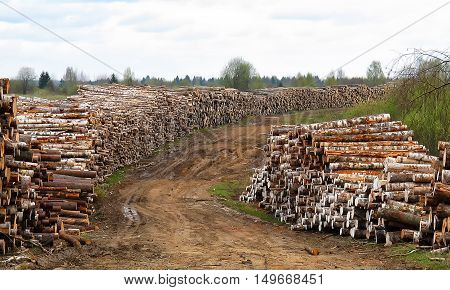 Racks with logs of the road environmental disaster. deforestation