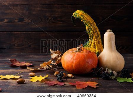 Assortment of pumpkins with autumn leaves on a wooden background. Copy space