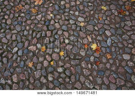 paving  old stone autumn texture. Pathway background