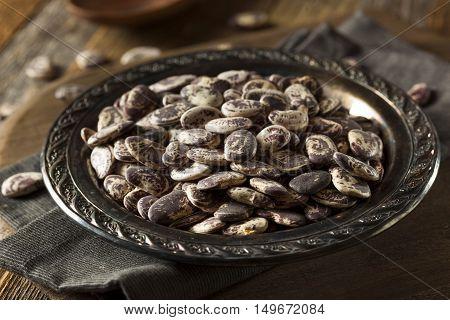 Raw Dry Organic Christmas Beans