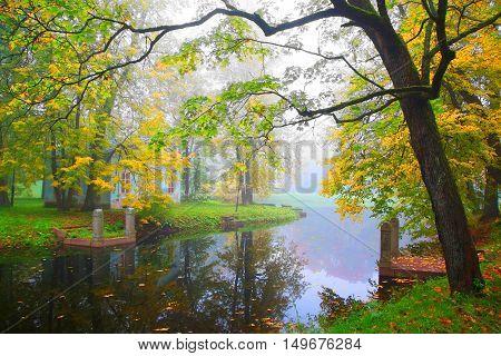 Foggy morning in Alexandrovsky Park in Tsarskoye Selo. Children's House and the cemetery animals