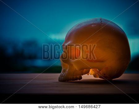 Still life with silhouette human skull on sky background