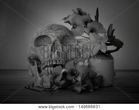 Still life with human skull on abstract background