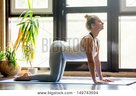 Full length portrait of attractive young woman working out at home in living room, doing yoga or pilates exercise on mat. Cow posture, Bitilasana, asana paired with Cat Pose on the exhale. Side view