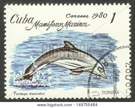 MOSCOW RUSSIA - CIRCA SEPTEMBER 2016: a stamp printed in CUBA shows a Tursiops truncatus dolphin the series