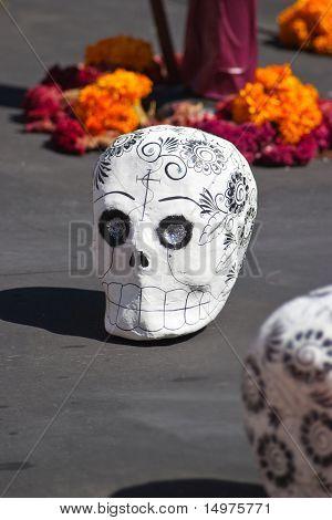 Skull On Floor