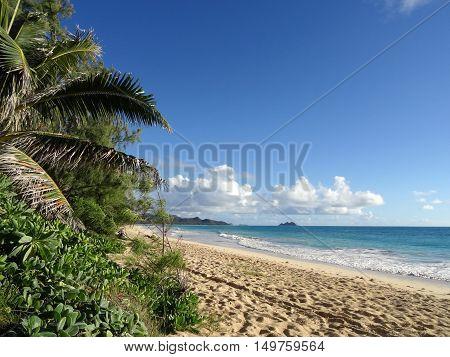 Waves lap on Sandy Waimanalo Beach at looking towards mokulua islands on Oahu Hawaii.