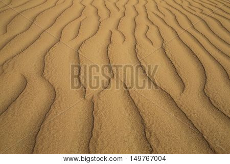 Pattern of sand dunes in the Emty Quarter desert that is covering large area in UAE KSA and Oman