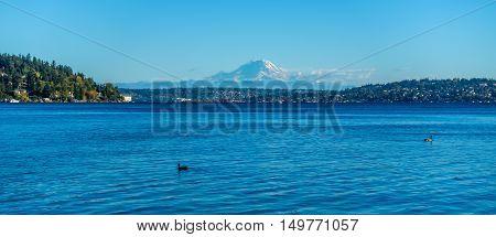 A view of Mount Rainier across Lake Washington.
