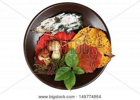 Autumn applique on clay plate isolated on white background