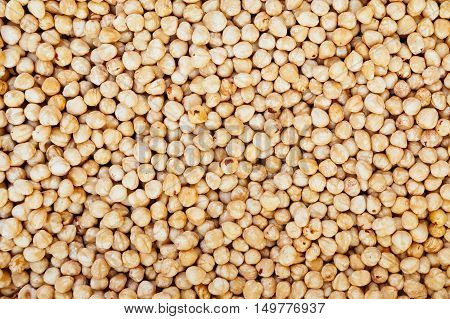 Big heap of hazel nuts background. Health food concept