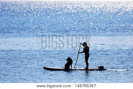 Paddler and Dog on Standup Paddle Board, sunny day with blue sea, Victoria, B.C. Canada