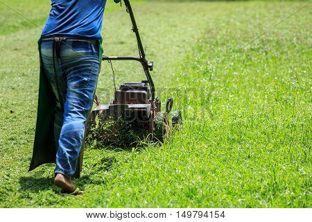 A Worker Mowing Grass In The Garden